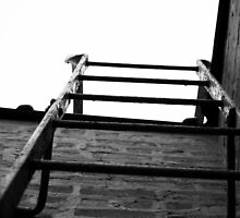 Ladder by quintinbell