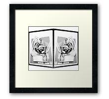 Two dick diagrams Framed Print