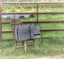 County Seat P.O. Box by wiscbackroadz