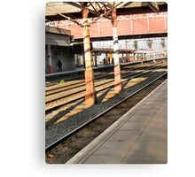 rail 4 Canvas Print