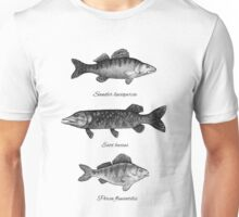 Zander, pike and perch Unisex T-Shirt