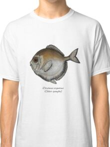 Silver spinyfin Classic T-Shirt