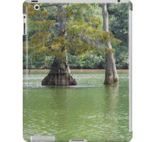 Waterworld iPad Case/Skin