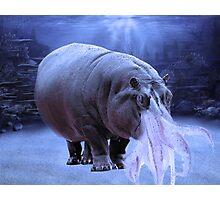 Hippo-Squid Fantasy Creature Photographic Print