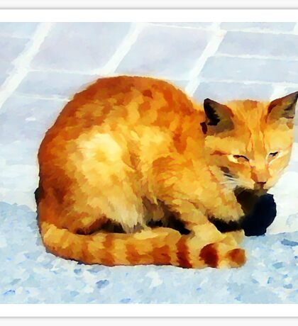 red tabby cat on the pavement Sticker