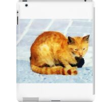red tabby cat on the pavement iPad Case/Skin