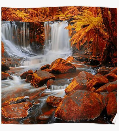 Horseshoe Falls in Mount Field National Park. Poster