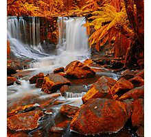 Horseshoe Falls in Mount Field National Park. Photographic Print