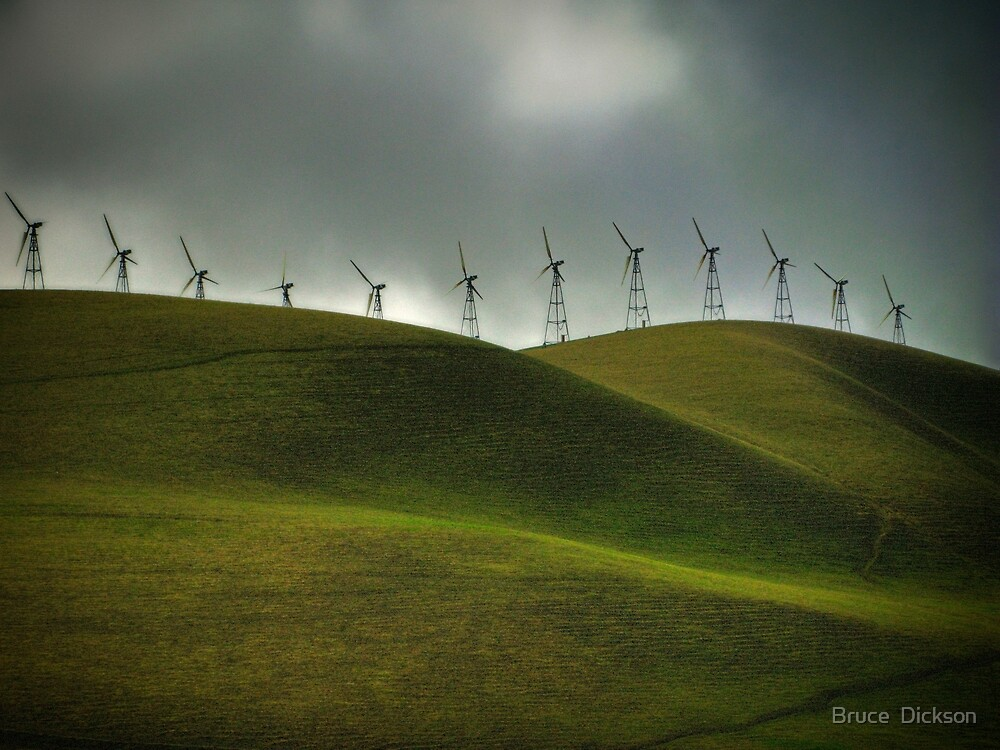 windswept by Bruce  Dickson