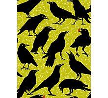 Black Birds on Green Photographic Print