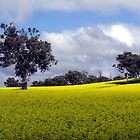 an agricultural yellow by LouJay