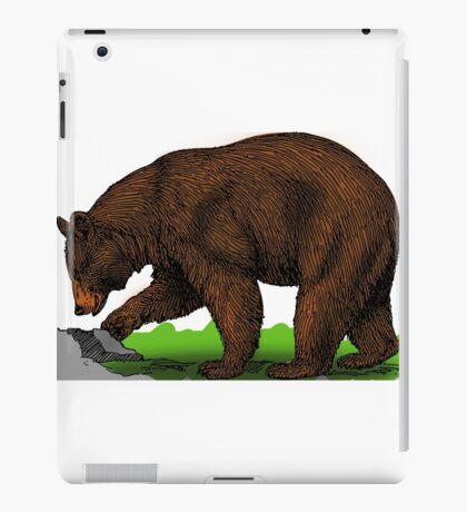 Animal bear biology brown color mammal iPad Case/Skin