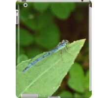 damsel fly iPad Case/Skin