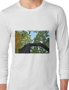 Twisted Autumn Long Sleeve T-Shirt