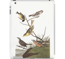 Arkansaw Siskin, Mealy Red-poll, Louisiana Tanager, Townsend's Bunting, Buff-breasted Finch, by John Audubon iPad Case/Skin