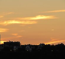 Sunset Over Jersey 2 by joan warburton