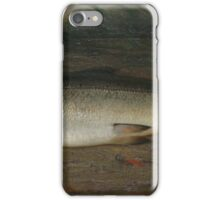 Atlantic Salmon by John C. Miles iPhone Case/Skin
