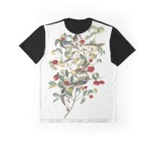 Audubon's Warbler, Hermit Warbler, Black-throated gray Warbler, by John Audubon Graphic T-Shirt