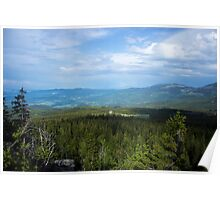 Evergreen Fields - Nature Photography Poster