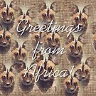 Greetings from Africa! by Maree Clarkson