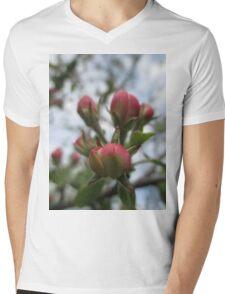 Pink And Cream Dream Mens V-Neck T-Shirt