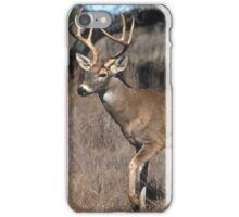 White Tail Deer iPhone Case/Skin