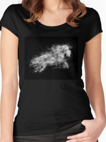 Smoke Horse Women's Fitted Scoop T-Shirt