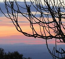 Sunset from Mt. Dandenong by Creativity for S4K