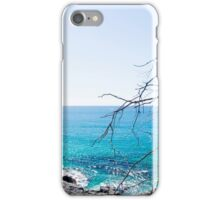 Dolphin Point iPhone Case/Skin