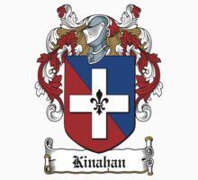 Kinahan (Down) by HaroldHeraldry