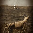 Tasmanian tiger and sailing ship by Richard Morden