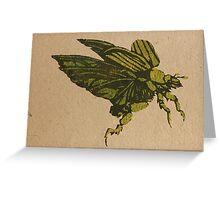 Christmas beetle 01 Greeting Card