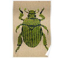 Christmas beetle 03 Poster