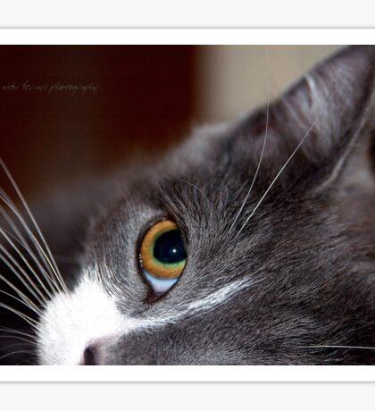 Innocence © Vicki Ferrari Photography Sticker