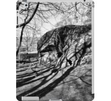 Shadow Land iPad Case/Skin