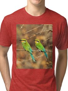 Bee-eater Greens - Mother and Chick of Spring Tri-blend T-Shirt