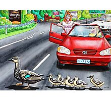 Ducks Crossing Photographic Print