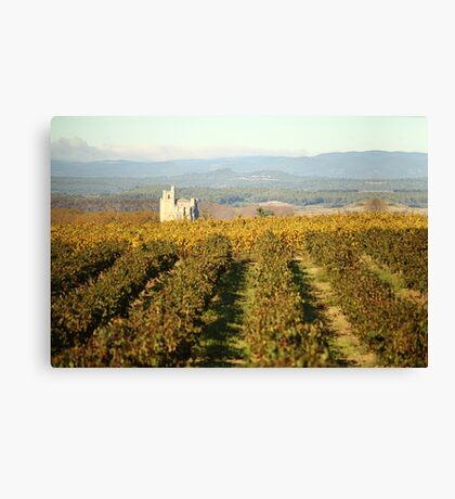 Vineyard cathedral. Canvas Print