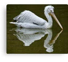 MIRROR MIRROR ON THE WALL ... Canvas Print