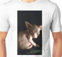 kitten bicolor sphynx cat Unisex T-Shirt
