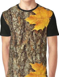 Fall Maple Leaf Graphic T-Shirt