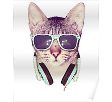 Funny Music Cool Cat Poster