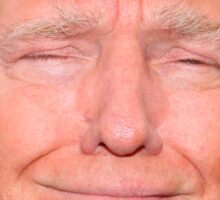 Donald Trump Face Sticker