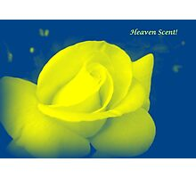 HEAVEN SCENT Photographic Print