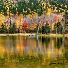 Autumn Reflected ! by Nancy Richard