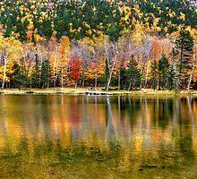 Autumn Reflected ! by Nancy Richard