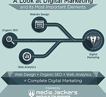 Website Design Company in Dubai by mediajackers