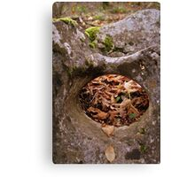 hole in the rock in the woods Canvas Print