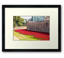 Ceramic poppies at the Tower of London Framed Print