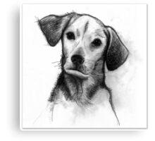 Cute Black/White Dog Canvas Print